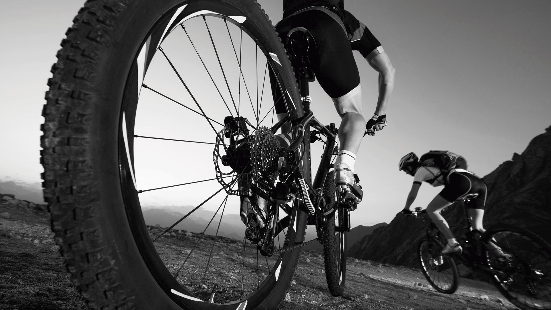 La mejor seguridad para ciclistas y bicicletas